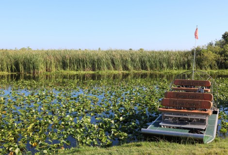 What to Expect on an Airboat Ride