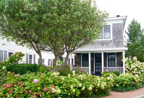 The Perfect Provincetown Vacation Rental