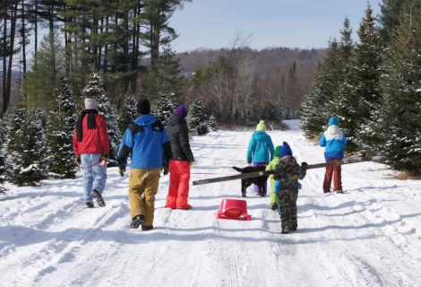 Choose and Cut Christmas Tree Farms in Vermont